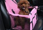 Comparatif siège auto pour chien