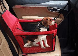 Test et avis sur le siège auto pour chien IvyLife